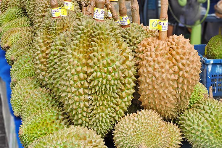 Durian • King of Fruit