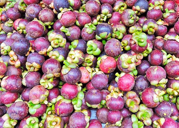 Mangosteen • Mang Khoot